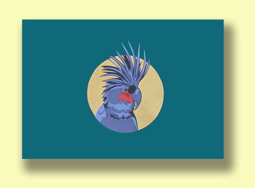 palm-cockatoo-webnew500