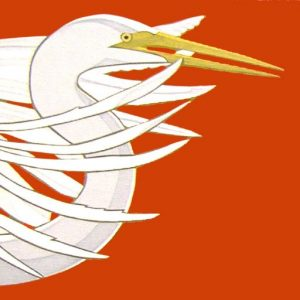 cropped-Egret-plumage-scarletsiteicon.jpg